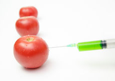 Tomatoes being injected Royalty Free Stock Photography