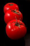 Tomatoes on black Royalty Free Stock Image