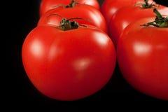 Tomatoes on black background Royalty Free Stock Photo