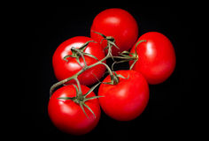 Tomatoes on a black background. Bunch of ripe red tomatoes on a black background Royalty Free Stock Images