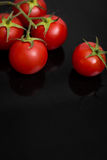 Tomatoes on a black stone Stock Images