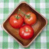 Tomatoes in a Bowl on a Picnic Blanket. Stock Photography