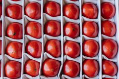 Tomatoes in a box. Ripe tomatoes in a box, top view Royalty Free Stock Photography