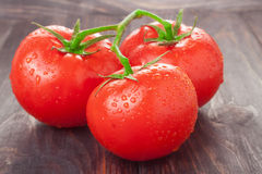 Tomatoes branch on a black wooden table with water droplets Stock Image