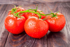 Tomatoes branch on a black wooden table with water droplets Stock Images