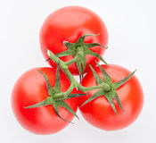 Tomatoes on a branch of green in the studio, top view Royalty Free Stock Images
