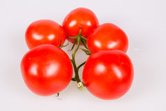 Tomatoes on a branch. Isolated on a white background Stock Photos