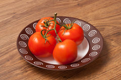 Tomatoes on the branch. Ripe tomatoes on the branch in the plate royalty free stock photo