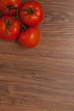 Tomatoes on the branch. Ripe tomatoes on the branch on the wooden table stock images