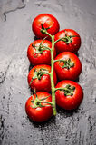 Tomatoes Branch With Water Drops On Dark Slate Background Royalty Free Stock Photography