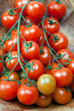 Tomatoes on a branch in  wooden bowl Stock Image