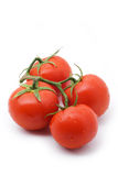 Tomatoes branches. Tomatoes on the branches on a white background Royalty Free Stock Photos