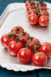 Tomatoes on branches Stock Images