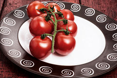 Tomatoes on branches Royalty Free Stock Images