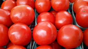 Tomatoes! Royalty Free Stock Images