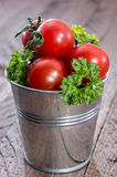 Tomatoes in a bucket Stock Photo