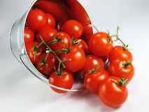 Tomatoes in a Bucket Stock Image