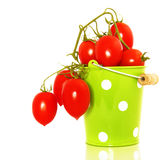 Tomatoes in bucket Royalty Free Stock Image