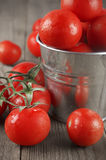 Tomatoes in bucket Stock Photography