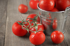 Tomatoes in bucket. Whole wet tomatoes in galvanized bucket on rustic wooden table Royalty Free Stock Photos