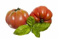 Tomatoes bull's eye Stock Photos