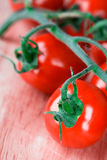 Tomatoes bunch Royalty Free Stock Photos