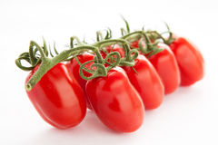 Tomatoes. A bunch of tomatoes on a white background Stock Image