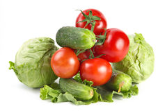 Tomatoes, cabbage cucumbers Royalty Free Stock Images
