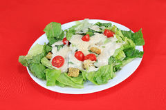 Tomatoes on Caesar Salad Royalty Free Stock Images