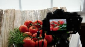 Tomatoes and Camera Focus Transition stock footage