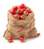 Tomatoes in canvas bag Royalty Free Stock Photo