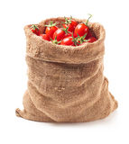 Tomatoes in canvas bag Stock Photos