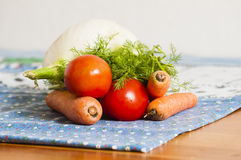 Tomatoes, carrots and fennel on blue tablecloth Stock Photography