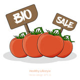 Tomatoes with cartoon look with signs Royalty Free Stock Photos