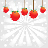 Tomatoes celebration Stock Images
