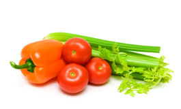 Tomatoes, celery and peppers isolated on white background. Royalty Free Stock Photography