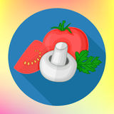 Tomatoes champignon flat vector icon Royalty Free Stock Photography