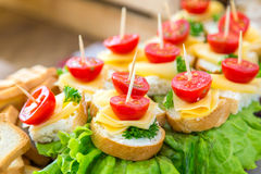 Tomatoes and cheese. Banquet feasts Royalty Free Stock Photo