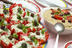 Tomatoes with cheese and eggplant salad Royalty Free Stock Images
