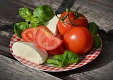 Tomatoes and Cheese on Red Plate Stock Photography