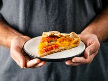 Tomatoes and cheese tart or galette royalty free stock image