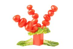 Tomatoes cherry Royalty Free Stock Image