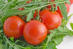 Tomatoes cherry with arugula leaves Stock Photo