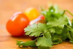 Tomatoes and Cilantro Royalty Free Stock Photo