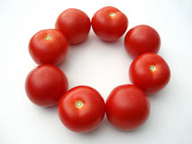 Tomatoes in a circle stock image