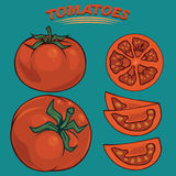 Tomatoes clipart. For using in different spheres Stock Photo