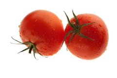 Tomatoes close up Royalty Free Stock Images