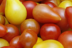 Tomatoes. Close up image of home grown tomatoes on white plate Stock Images