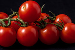 Tomatoes. Close up of vine tomatoes on a black background stock photography