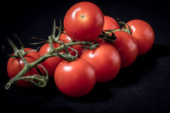 Tomatoes. Close up of vine tomatoes on a black background stock image